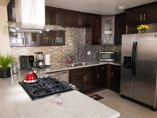 Grand Opening Disneyland Vacation House Special - Anaheim vacation rentals