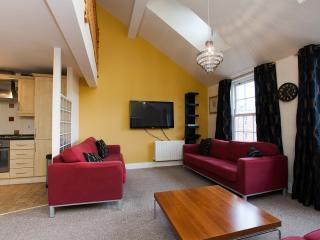 Penthouse University Area with parking (sleeps 6) - Belfast vacation rentals