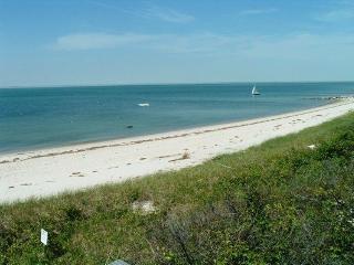 40 FRANKLIN CARTWAY 124879 - Cape Cod vacation rentals