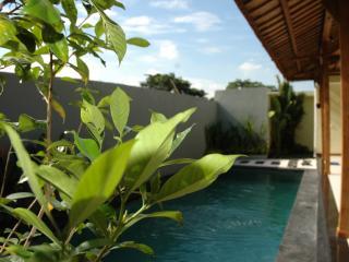 Newly Built 2 Bedroom Villa Near Canggu Club Bali - Canggu vacation rentals