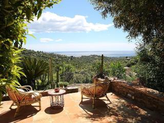 Villa, 12km de St Tropez, piscine dans nid de - La Croix-Valmer vacation rentals
