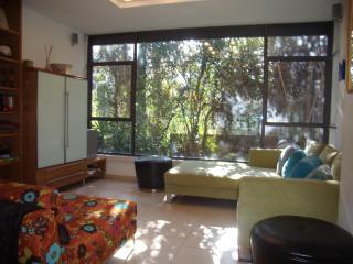 Beautiful Fully renovated 2 BDR garden apartment - Jerusalem vacation rentals