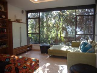 Gorgeous Garden  2 BD Old Katamon - Jerusalem vacation rentals
