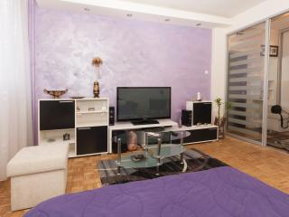 Usce Arena Superb Studio, sleeps 2, wifi, parking - Serbia vacation rentals