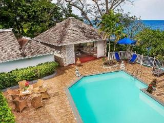 Cliffside Lime Tree offers ocean views, freshwater pool & grotto, kayak, and full staff - Ocho Rios vacation rentals