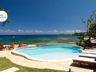 Secluded treasure, Hidden Bay Villa with pool, hot tub, cliffside patio & full friendly staff - Runaway Bay vacation rentals