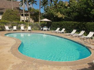 Vacation Rental in Kauai