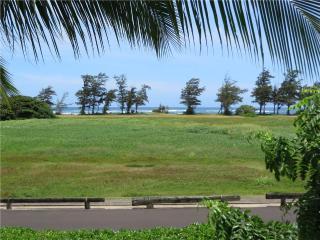 Plantation Hale J16- Ocean View, AC,Full Kit - Kauai vacation rentals