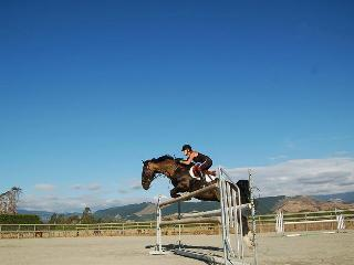 Equestrian stay - Ruby Bay vacation rentals