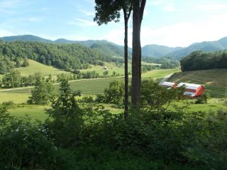 Log Cabin-Secluded & Convenient, Views, Pets Wel. - Asheville vacation rentals