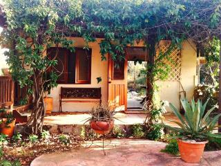Alto Vista sanctuary - Oranjestad vacation rentals