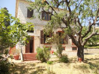 Il Vecchio Mandorlo - Sirolo vacation rentals