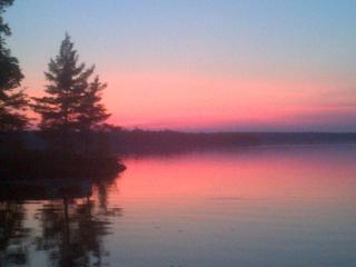 Private Lakeside Gem, Pristine Sandy Beach - Cloyne vacation rentals