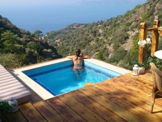 Pure Nature Luxury in the middle of nature! - Mugla Province vacation rentals
