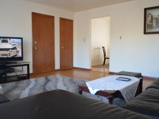 Homey Chicago Condo (2Br-1Ba) - Illinois vacation rentals