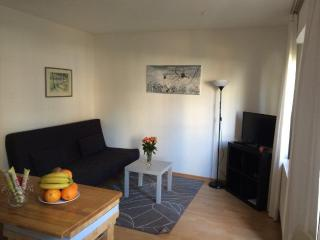 Vacation Apartment in Cologne - 807 sqft, central, modern (# 520) - North Rhine-Westphalia vacation rentals
