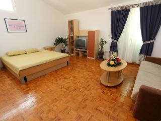 Spacious Zrce beach apartment for 6 - Novalja vacation rentals