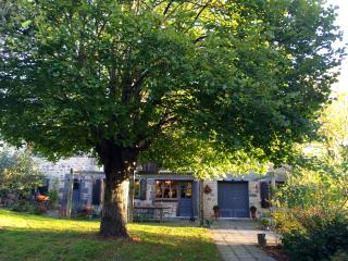 Le Clos Saint-Angel (Bois des Forets) - Saint-Angel vacation rentals