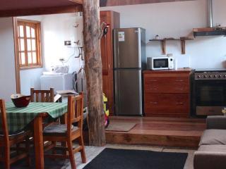Chile Wild - Pichipehuen - Araucania Region vacation rentals