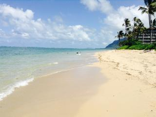 Breathtaking Ocean Views Surround You! - Hauula vacation rentals