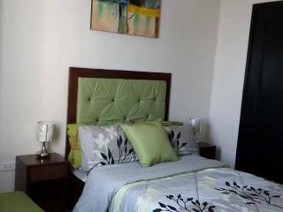 Fully Furnish 1 Bedroom Condo - Cebu vacation rentals