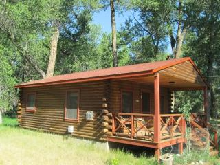 Woodland Brook Wintersong – Buena Vista, CO Cabin 4 - Buena Vista vacation rentals