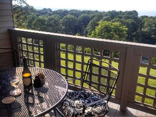 Cozy 2BR/2BA, Excellent Views, Ez Access to Ski - Steeles Tavern vacation rentals