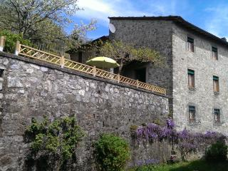 L'OLIVO - Modern Colored Countryhouse Garden&Wifi - Lucca vacation rentals