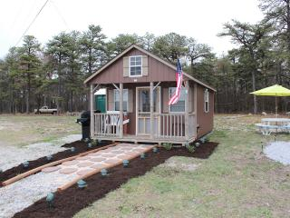 Modern Tiny House Primitive Cabin - Wifi & Netflix - Biglerville vacation rentals