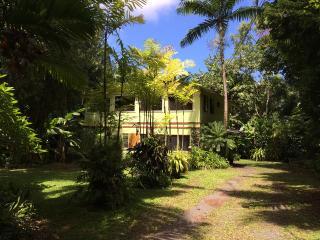 Hana Palms Retreat Paradise in Heavenly Hana - Hana vacation rentals