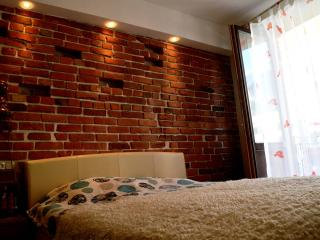 RedBrick old town appartment - Kaunas vacation rentals