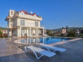 LUXURY DESIGN VILLA ,BIG POOL,BIG GARDEN - Hisaronu vacation rentals