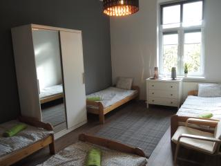 Charming apartment WiFi, center, 6-8 pax - Krakow vacation rentals