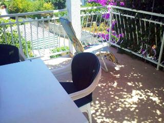 Apartment DaLmi Razanj 2 for 4 with air conditioning and WiFi - Razanj vacation rentals