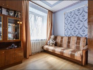 Quiet 2 bedroom apartment in 15 min from Cremlin - Moscow vacation rentals