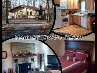 Hummel's Resort - White Haven vacation rentals