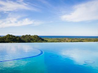 Beaches Ocean Views Mountain Top Infinity Pool G - Las Terrenas vacation rentals