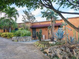 Monte Placido-M-Ocean view, hilltop, infinity pool - Las Terrenas vacation rentals