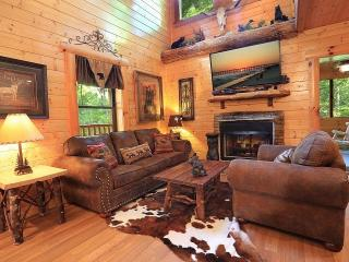 Grizzwald Den - 3 Levels/Movie Theater/GameRoom - Sevier County vacation rentals