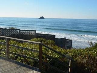 Falcon Getaway a 2 bedroom 2 bath Ocean front Arch Cape home - Cannon Beach vacation rentals