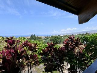Distinctive Custom Cedar Home -with Ocean & Mountain Views! - Big Island Hawaii vacation rentals