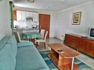 TH00529 Apartments and rooms Astoria / One bedroom A8 - Seget Vranjica vacation rentals