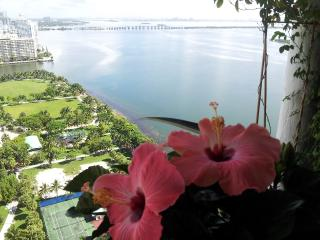 Downtown luxury Apt. W/E Special. Amazing Bay view - Miami vacation rentals