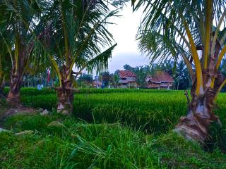 Eco-Luxury Retreat Ubud Rice Field Joglo Villa - Lodtunduh vacation rentals