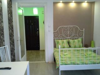 Cozy and Nice Room Calea Victoriei - Bucharest vacation rentals