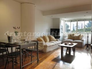 Rep. Arabe Siria and Santa Fe - Buenos Aires vacation rentals