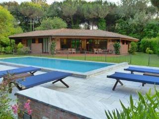 Villa Ai Ronchi - Ronchi vacation rentals