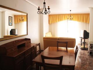 Apartment in the center, 150m from the beach - Guardamar del Segura vacation rentals