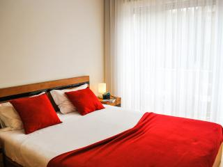 apartamentos portodouro st.catarina - Porto vacation rentals