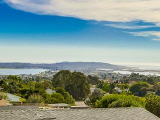 Forever Views of ocean,bays,, city, & Mexico - La Jolla vacation rentals